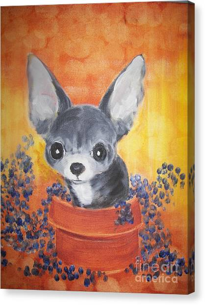 Pup In A Pot 11 Canvas Print