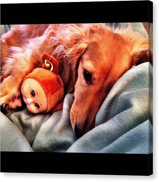 Primates Canvas Print - Puppy Love by Tasha L
