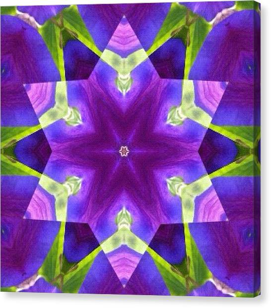 Mandala Canvas Print - #purple And Green #star #fractal #art by Pixie Copley