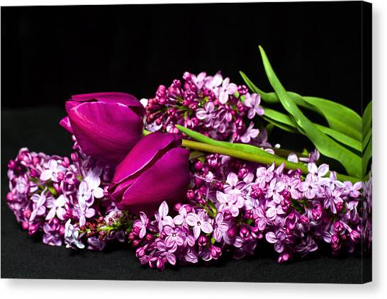 Purple Flowers Canvas Print by Trudy Wilkerson