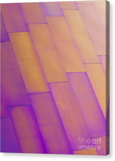 Purple Orange I Canvas Print