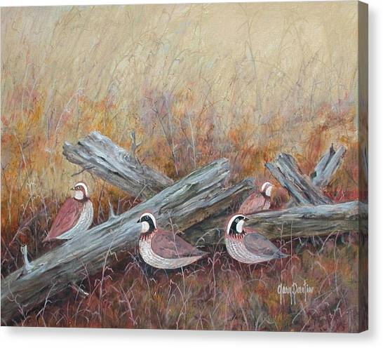 Quail In The Grass Canvas Print