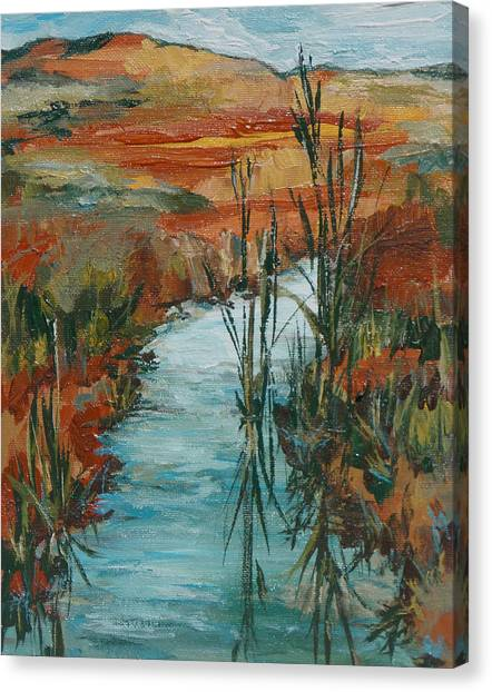 Quiet Stream Canvas Print by Sandy Tracey