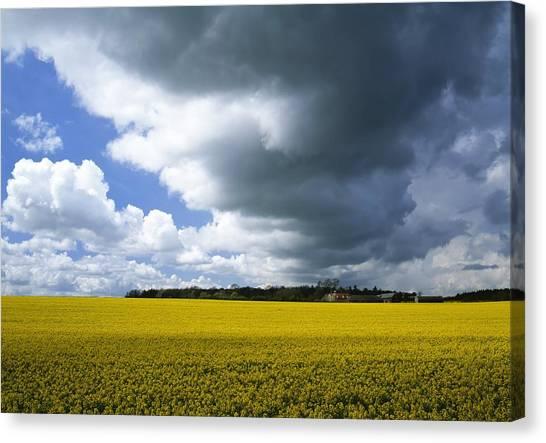 Rain Clouds Canvas Print by Adrian Bicker