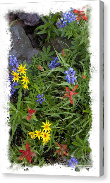 Rain Forest Bouquet Canvas Print by Judy Deist