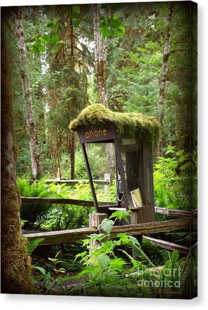 Rain Forest Telephone Booth Canvas Print