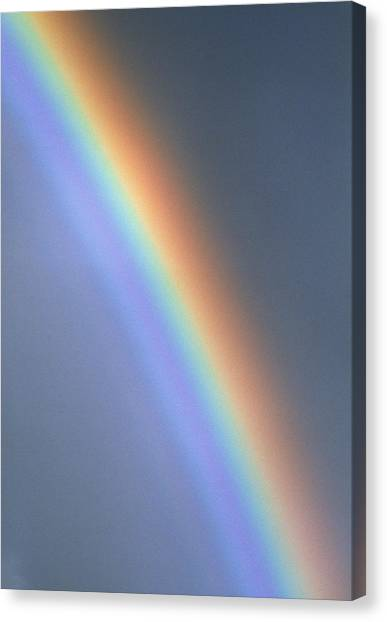 Rainbow Canvas Print by Dr Morley Read