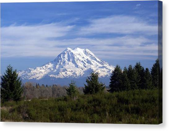 Rainier In High Contrast Canvas Print