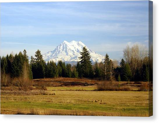 Rainier Standing Tall Canvas Print
