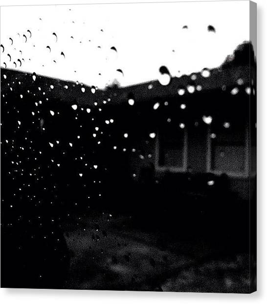 Turtles Canvas Print - Rainy Day Go Away. I Start School by Turtle Torres