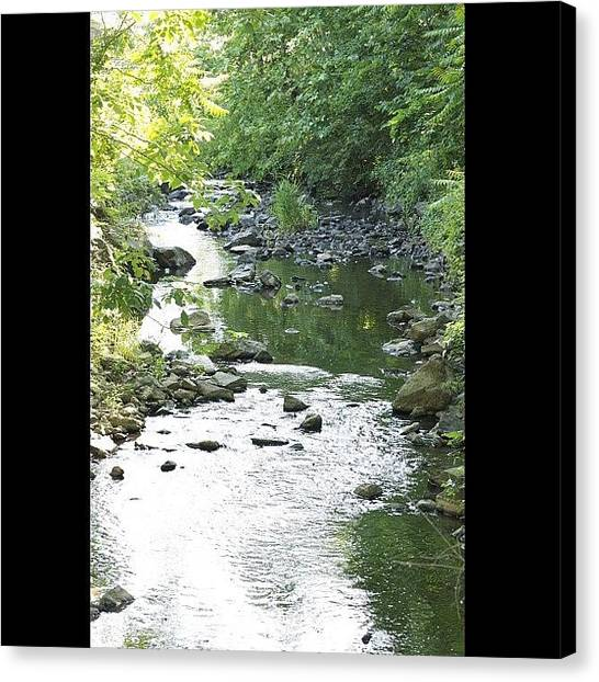 Kings Canvas Print - #randomfind ##water ##creek #outdoors by Cai King-Young