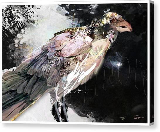 Raven 10 Canvas Print by James VerDoorn