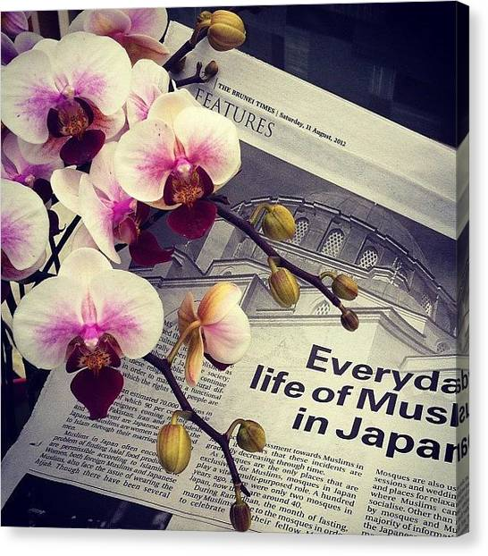 Orchids Canvas Print - Reading @thebruneitimes To The Orchids by Aliya Zin