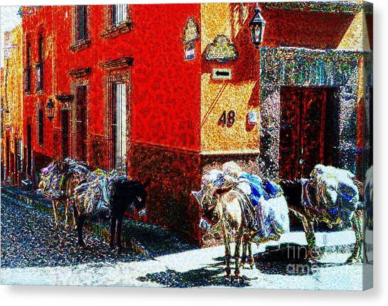 Ready To Look For Gold In The  Sierra Madre Canvas Print