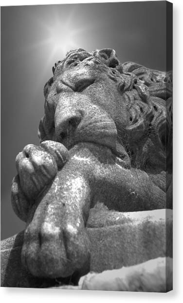 Recoleta Lion Canvas Print