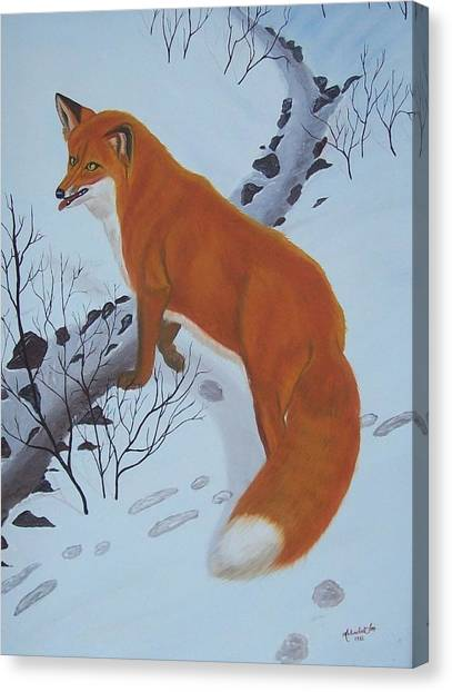 Red Fox In Snow Canvas Print by Melinda Fox