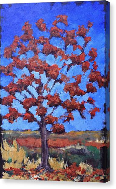 Red Maple Canvas Print by Lisa Masters