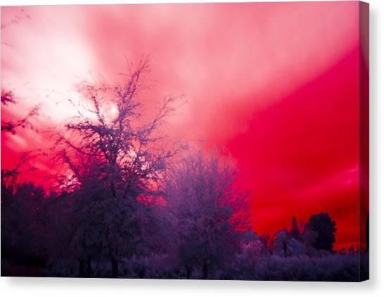 Red Canvas Print by Nicholas Evans