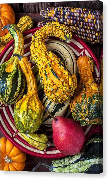 Indian Corn Canvas Print - Red Pear And Gourds by Garry Gay