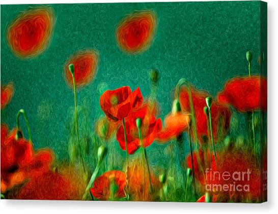 Background Canvas Print - Red Poppy Flowers 07 by Nailia Schwarz