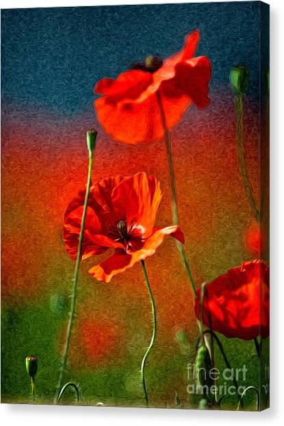 Background Canvas Print - Red Poppy Flowers 08 by Nailia Schwarz