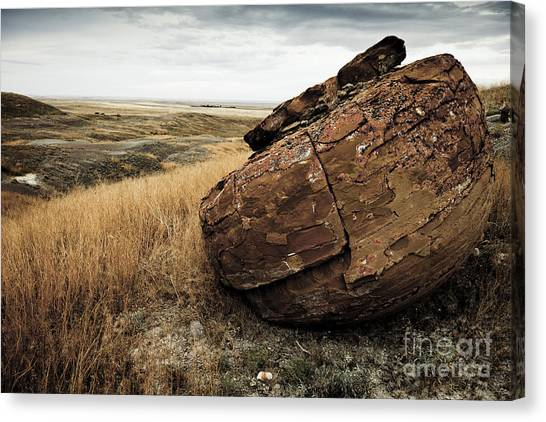 Red Rock I Canvas Print