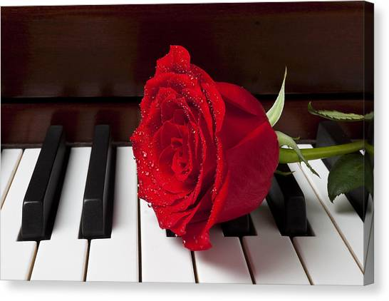 Wet Rose Canvas Print - Red Rose On Piano by Garry Gay