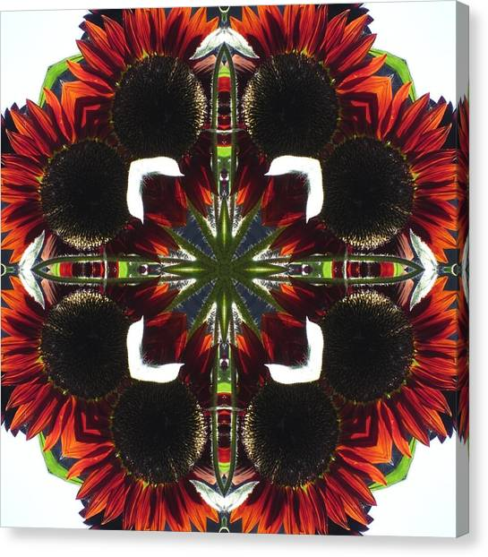 Red Sunflowers Canvas Print