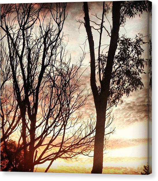 Flames Canvas Print - #red #yellow #sunset #sky #tree by Logan Mcpherson