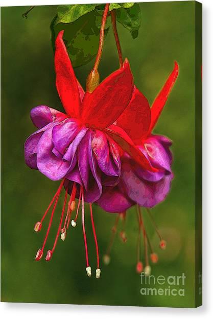 Redpurple Flower Canvas Print