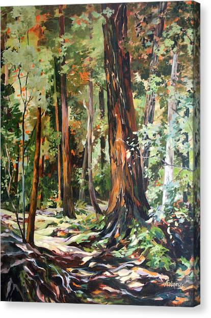 Redwoods Maui Canvas Print