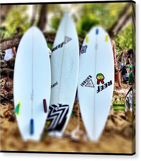 Reef Sharks Canvas Print - #reef #board #tabla #surf #surfing by Havito Nopal