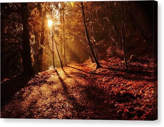 Reelig Sun Canvas Print