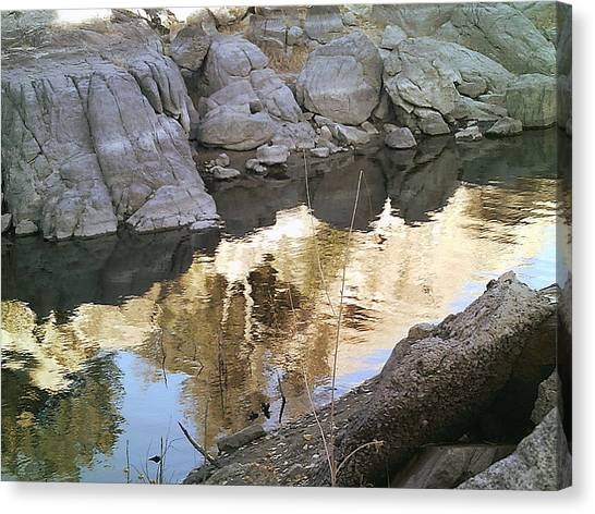 Reflect Canvas Print by Lisa Wells