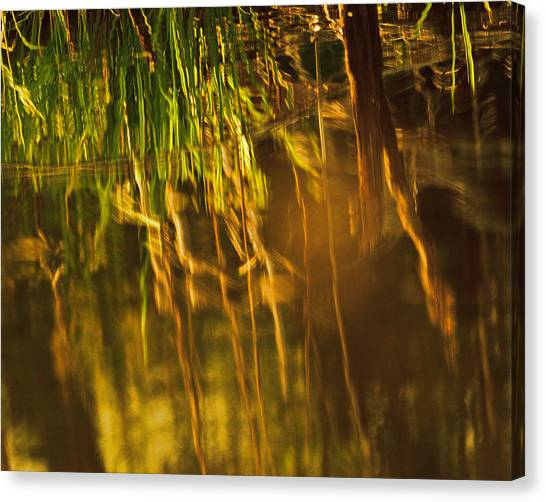 Susan Canvas Print - Reflecting On A Summer Morn by Susan Capuano