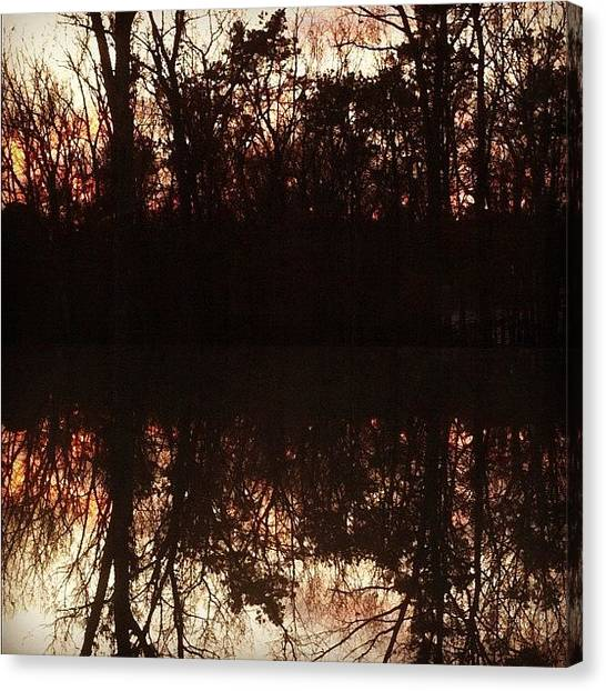 Symmetrical Canvas Print - #reflection  Of The #trees In My by Anthony Sclafani