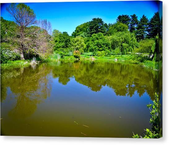 Reflection Pond Canvas Print by Erica McLellan