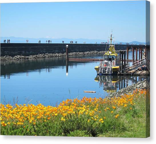Reflections Of Ogden Point Canvas Print
