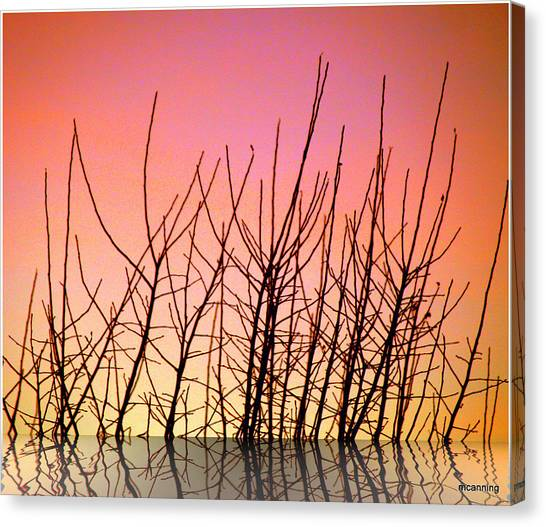 Reflects In Nature Canvas Print