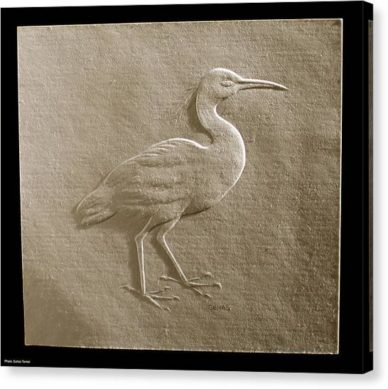Relief Bird On Paper Canvas Print