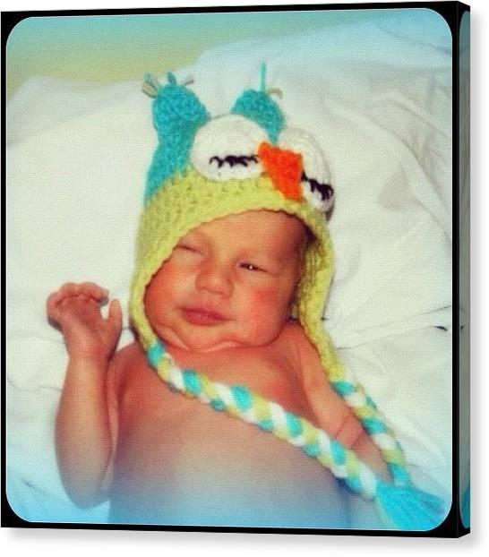 Owls Canvas Print - #repost #newborn #baby #grandson by Lori Lynn Gager