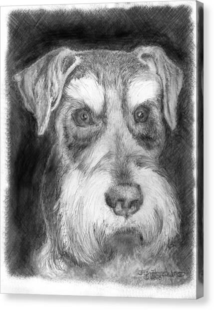 Rescue Dog-kirby Minature Schnauzer Canvas Print by Jim Hubbard