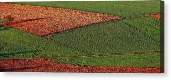 Resting Fields 1 Canvas Print