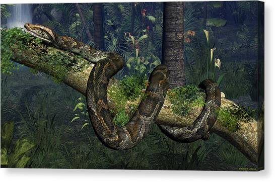 Reticulated Pythons Canvas Print - Reticulated Python by Walter Colvin