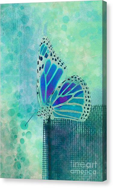 Bugs Canvas Print - Reve De Papillon - S02b by Variance Collections