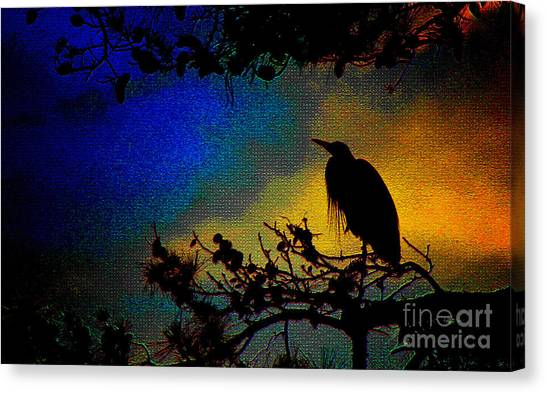 Richly Colored Night  Canvas Print