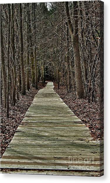 Right Path Canvas Print by Gregory Dragan