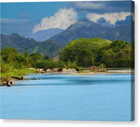 River Crossing Canvas Print by Delores Knowles
