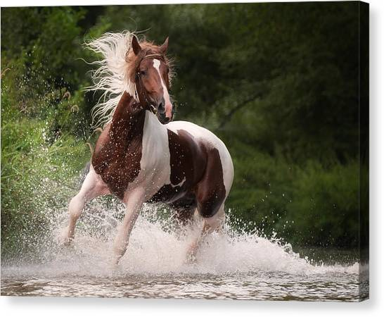 Canvas Print - River Horse by Tanya Kozlovsky