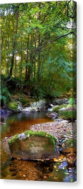 River In Cawdor Big Wood Canvas Print